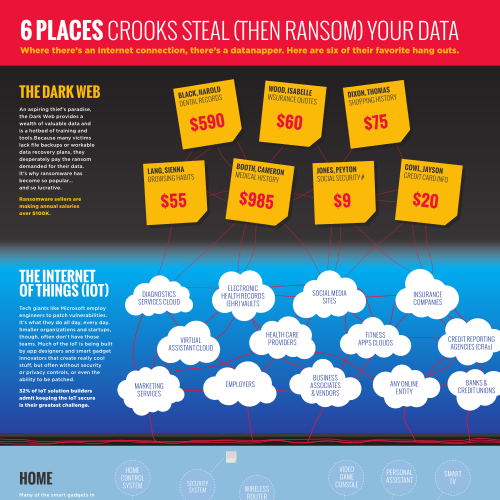 Data Privacy Infographic: 6 Places Crooks Steal and Ransom Your Data (sample)